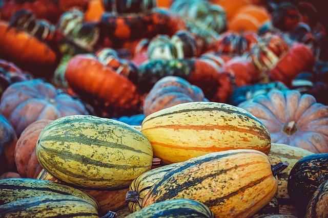 podzimní ovoce